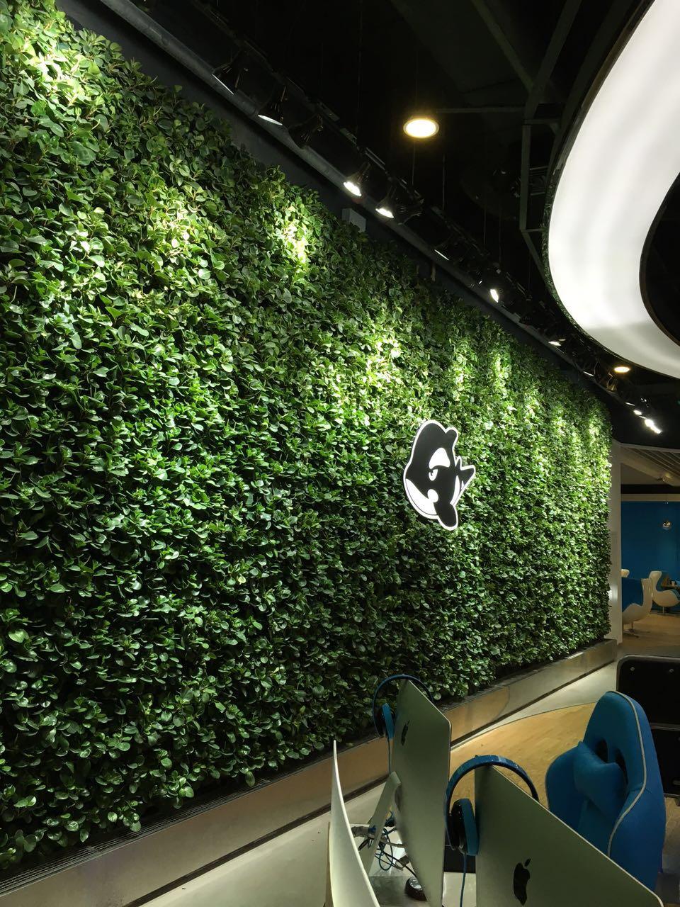 绿植墙psd素材